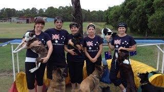 Onemind Dogs Challenge 2 - The Aussie Way!!!