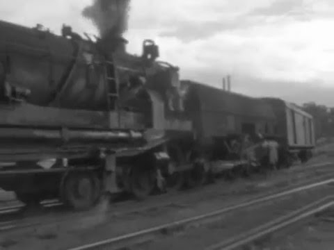 Trainspotting with Roger McKenzie: NSW trains 1960s-70s