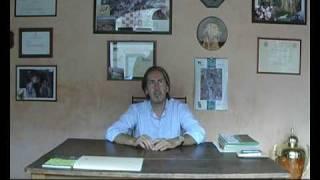 Claudio nencini spiega i criteri con cui scegliere fattrice e stallone un accoppiamento. in questo caso nencini's ira mago sono protagonisti ...