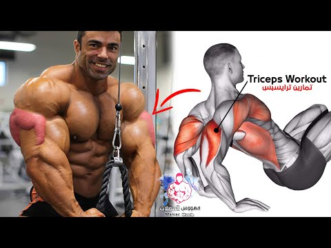 TOP 6 EXERCISES TO BUILD TRICEPS WORKOUT 🔥 from YouTube · Duration:  4 minutes 28 seconds