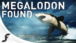 One of jackfrags's most viewed videos: MEGALODON FOUND! Battlefield 4 Giant Shark Easter Egg!
