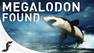 MEGALODON FOUND! Battlefield 4 Giant Shark Easter Egg! thumbnail