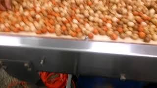 Оборудование для накатки чипсовой оболочки на арахис: PFMG-компани.