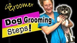 Dog Grooming StepsHow to Groom a Dog from Start to Finish (give your dog a haircut)