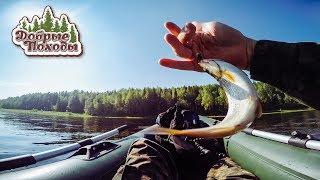 видео Ловля форели на удочку осенью - Рыбалка, охота, отдых и туризм.