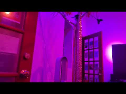 Philips Hue BR 30 review