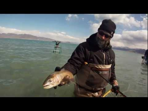 Truckee River and Pyramid Lake Fly Fishing - GoPro HD