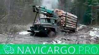видео Перевозка леса