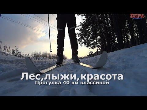 Зима. Лес, лыжи, красота.Рассказ о 40 км лыжной прогулке.