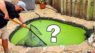 CAPTURED HIDING POND MONSTER IN GREEN WATER!