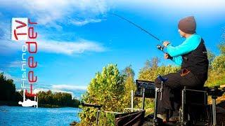 Как ловить на фидер. Рыбалка осенью на фидер. Конкурс. Поиск места ловли. Vlog #41 Feederfishing tv