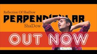 Perpendicular | ShaDow | New Hindi Hip Hop Song 2020 | Reflection Of ShaDow