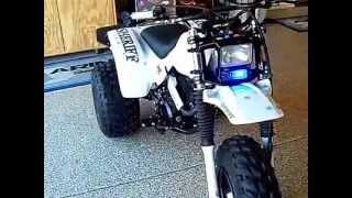 1985 ATC 250SX Sheriff Trike