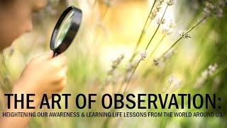 The Art of Observation: Heightening our Awareness and Learning Life Lessons from the World Around Us