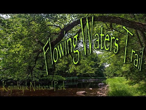 Kejimkujik National Park - Flowing Waters Hiking Trail