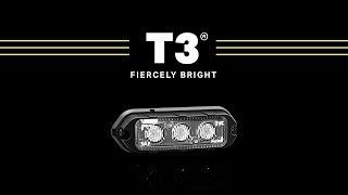 T3 Showcase // Fiercely Bright