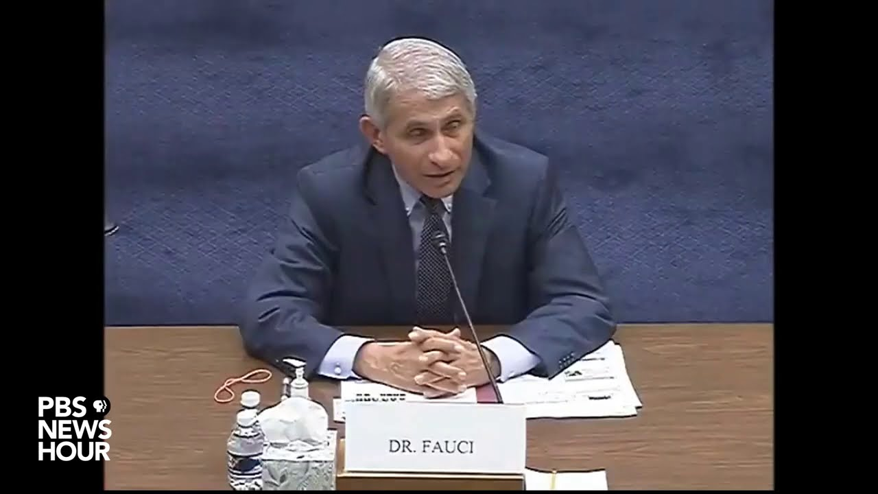 WATCH: Scalise asks Fauci, did travel bans save lives?