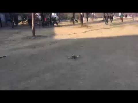 Quadcopter made by students of ssm college Srinagar