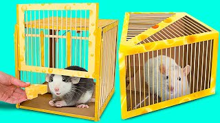 2 DIY Safe And Simple Rat Traps || How To Make Simple Humane Rat Traps From Cardboard