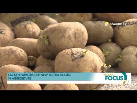 Kazakh farmers use new technologies in agriculture