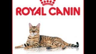 Ройал канин корм для кошек Royal Canin Sterilized