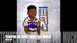 TEMPER DA DON - WAY Too MUCH