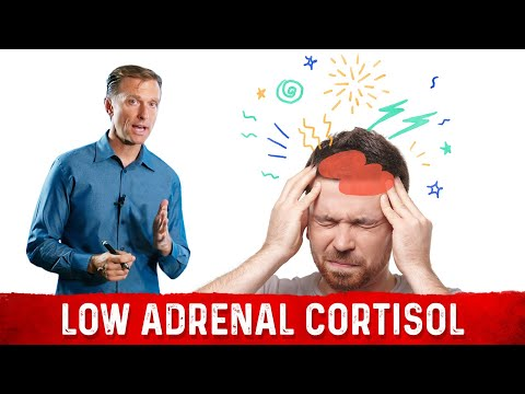 Adrenal Insufficiency and Low Cortisol: Symptoms, Causes & Solutions