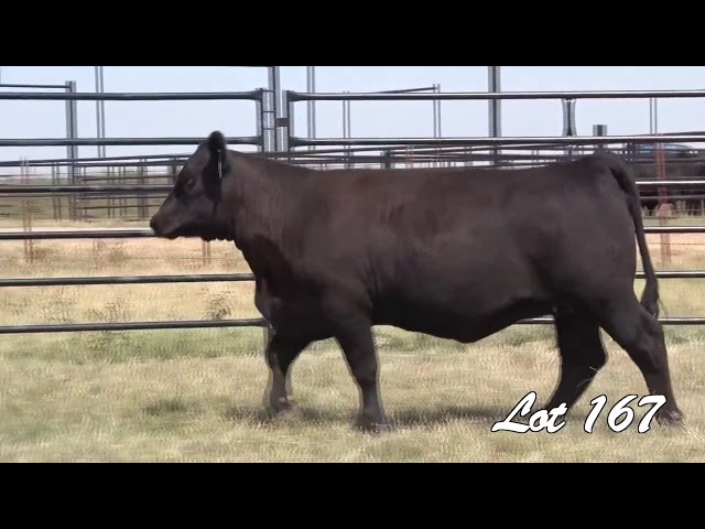 Pollard Farms Lot 167