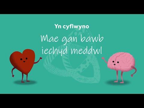 Mae Gan Bawb Iechyd Meddwl - Cymraeg (We All Have Mental Health - Welsh Version)