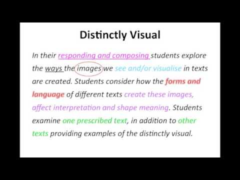 Distinctly Visual - Unpacking the Syllabus