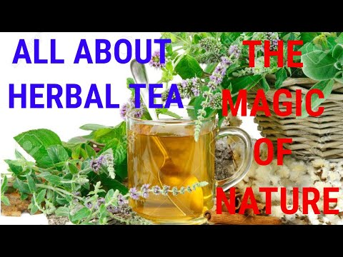 ALL ABOUT HERBAL TEA - THE MAGIC OF NATURE | HEALTH & FITNESS CHANNEL