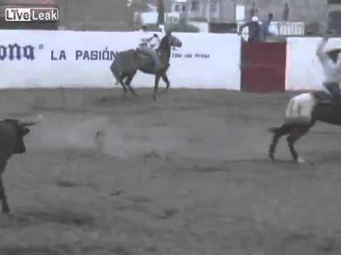 Kenhvideo.com-Bò tót đâm thủng bụng con ngựa của đấu sỹ