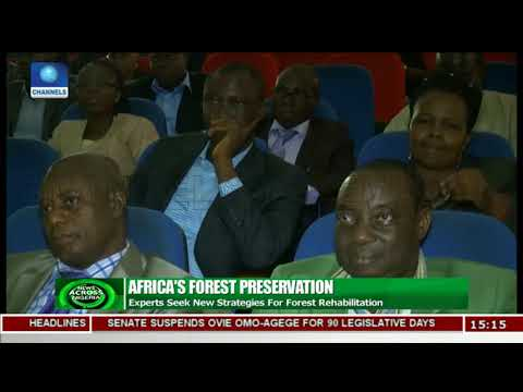 Experts Seek New Strategies For Forest Rehabilitation | News Across Nigeria |