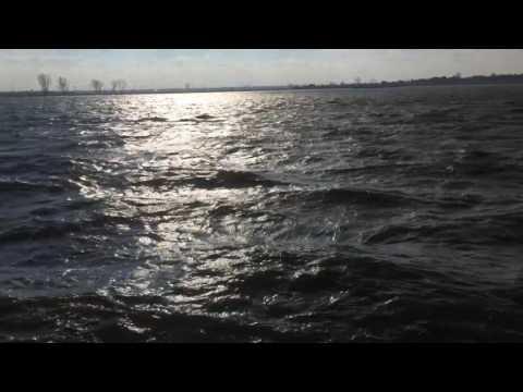 Marea Neagra...la Cernica