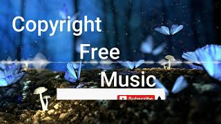 Dinner for Two-Copyright free song in 2020[download in description]