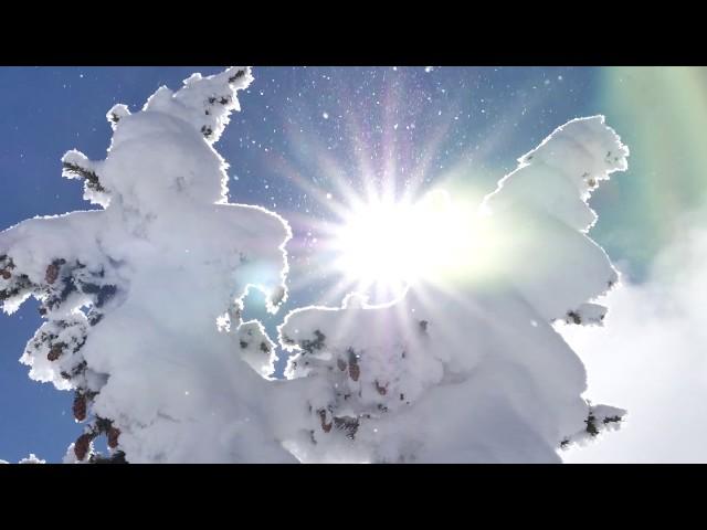Snow Check February 23