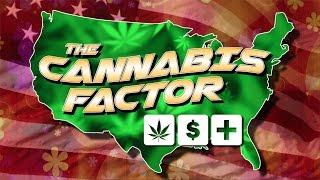 The Cannabis Factor Pilot