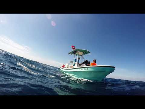 Spearfishing On Scuba : Jupiter Florida 10-27-18