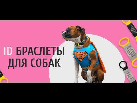ID Браслет для собак