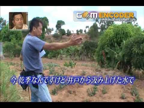 グ★ッ★と★!★地★球★便★その1★メキシコ   by Takahiro Murokawa