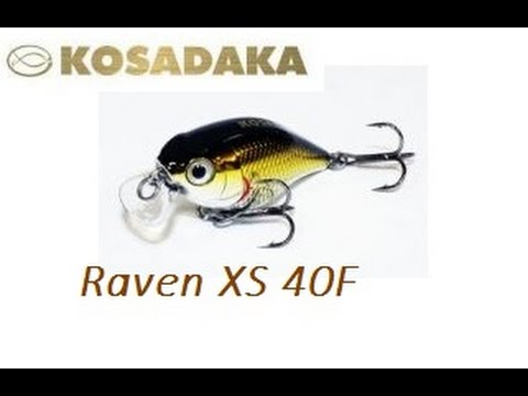 Язь на всплеск и Kosadaka Raven XS 40F