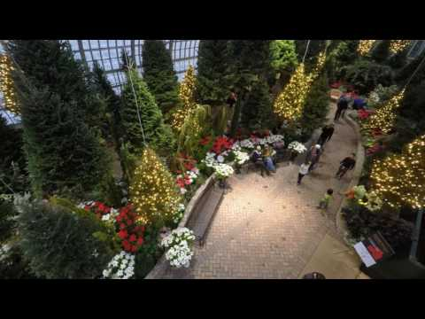 Garfield Park Conservatory Holiday Flower Show 2016 - Sky Forest