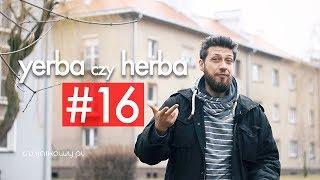Yerba czy herba: PYTANIA do WAS. Czajnikowy.pl