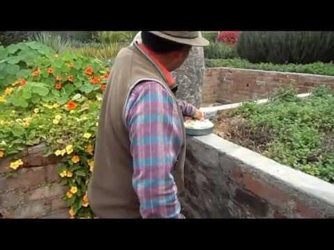 Turismo en trujillo 1 3 museo unt jardin de los sentidos for Jardin de los sentidos