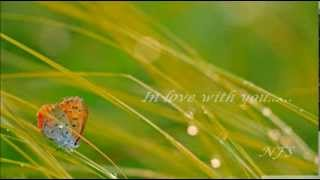 Download Mp3 Dana Winner - In Love With You