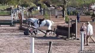 Horse Jumping Fail @ Lusks Equestrian Ireland
