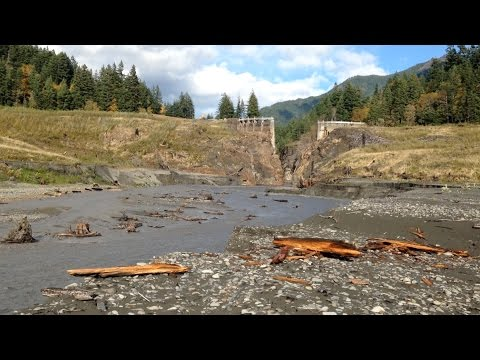 A river unleashed | Science News