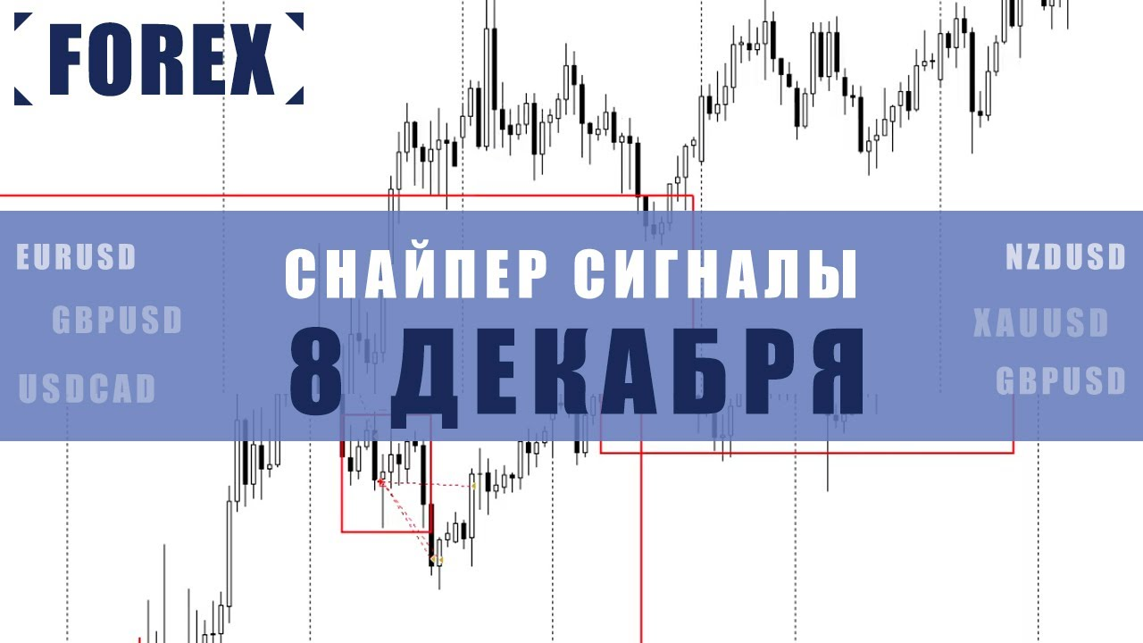 СИГНАЛЫ СНАЙПЕР НА 8 ДЕКАБРЯ  | Трейдер Максим Михайлов