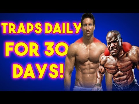 Results Of Training Traps Daily | Day 1/30