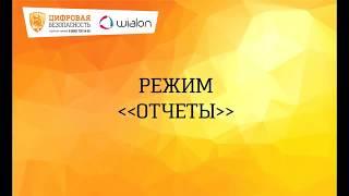 Обучение пользователей Wialon. Отчеты